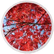 Autumn Leaves And Blue Sky Round Beach Towel