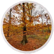 Autumn Leaves Common Wood  Round Beach Towel