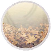 Autumn Leaves Floating In The Fog Round Beach Towel