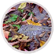 Autumn Leaves In Creek Bed Round Beach Towel