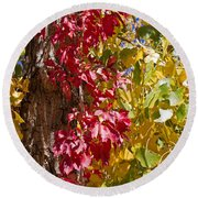 Autumn Leaves In Palo Duro Canyon 110213.97 Round Beach Towel