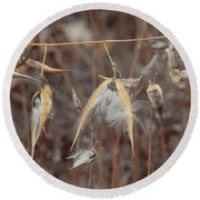 Autumn Milkweed Round Beach Towel