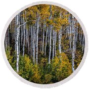 Autumn On Mcclure Pass Round Beach Towel