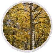 Autumn Orange Forest Colors At Hager Park No.1189 Round Beach Towel