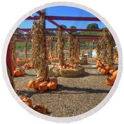 Autumn Pumpkin Patch Round Beach Towel by Joann Vitali