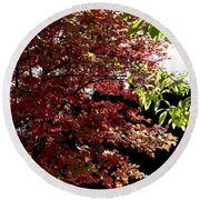 Autumn Snowball Bush Round Beach Towel