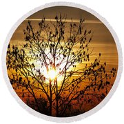 Autumn Tree In The Sunset Round Beach Towel by Michal Boubin
