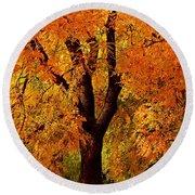 Autumn Tree Round Beach Towel