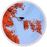 Autumn View Through Red Leaves Round Beach Towel