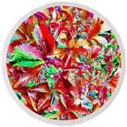 Autumn Virginia Creeper Round Beach Towel