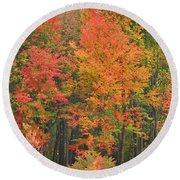 Autumn Woods Round Beach Towel
