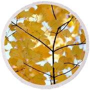 Autumn's Golden Leaves Round Beach Towel by Jennie Marie Schell