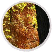 Autumn's Golds Round Beach Towel