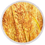 Autumns Passion Round Beach Towel