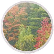 Autumntrees And Fog Round Beach Towel