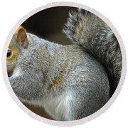 Aw Nuts Round Beach Towel