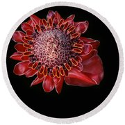 Awapuhi Ko Oko'o - Torch Ginger - Etlingera Elatior - Hawaii Round Beach Towel