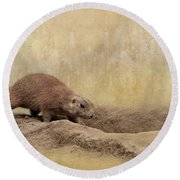 Away Quickly Round Beach Towel