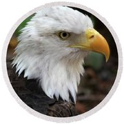 Awesome American Bald Eagle Round Beach Towel