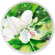 Awesome Apple Blossoms Round Beach Towel