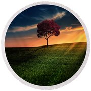 Awesome Solitude Round Beach Towel