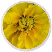 Ayz - A Yellow Zinnia Round Beach Towel