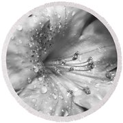 Azalea Flower With Raindrops Monochrome Round Beach Towel