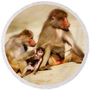 Baboon Family In The Desert Round Beach Towel