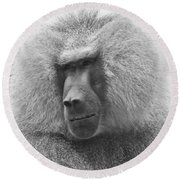 Baboon In Black And White Round Beach Towel