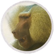 Baboon In The Sun Round Beach Towel