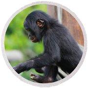Baby Bonobo Round Beach Towel