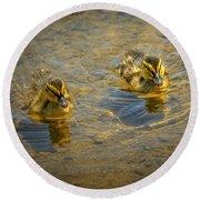 Baby Ducks Round Beach Towel