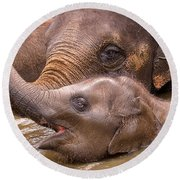 Baby Elephant Round Beach Towel