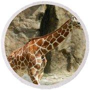 Baby Giraffe 4 Round Beach Towel