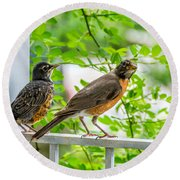 Baby Robin - Ready...just Do What I Do Round Beach Towel