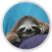 Baby Sloth Round Beach Towel