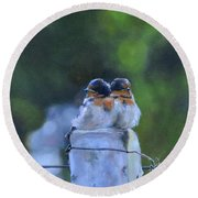 Baby Swallows On Post Round Beach Towel