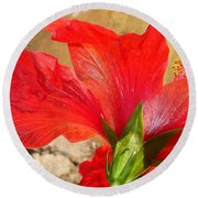 Back Of A Red Hibiscus Flower Against Stone Round Beach Towel