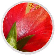 Back View Of A Beautiful Bright Red Hibiscus Flower Round Beach Towel