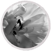 Backlit Black And White Tulip Round Beach Towel