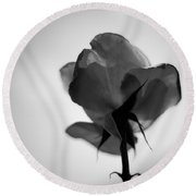 Backlit Rose Black And White Round Beach Towel