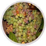 Backyard Garden Series -hidden Grape Cluster Round Beach Towel