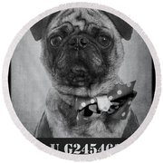 Bad Dog Round Beach Towel by Edward Fielding