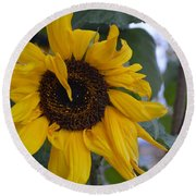 Bad Petal Day  Round Beach Towel