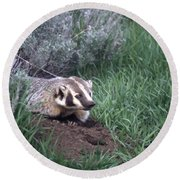Badger In Yellowstone Round Beach Towel