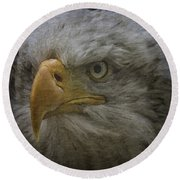 Bald Eagle 26 Round Beach Towel
