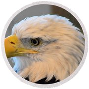 Bald Eagle 7615 Round Beach Towel