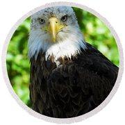 Bald Eagle - Alaska Round Beach Towel