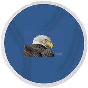 Bald Eagle Closeup Round Beach Towel