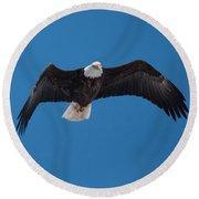 Bald Eagle In Flight 4 Round Beach Towel